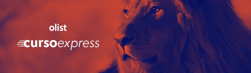 Curso Express do Olist: faça cadastros perfeitos nos marketplaces!